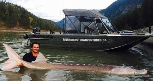 一男子河边钓鱼结果意外捕获庞然大物竟然