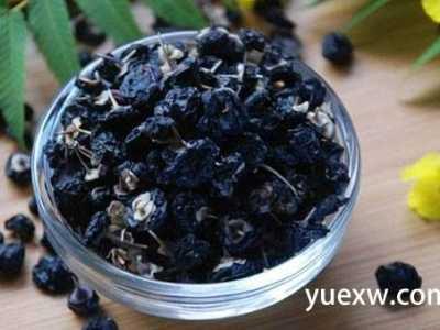 黑枸杞的功效与作用 黑枸杞的正确吃法