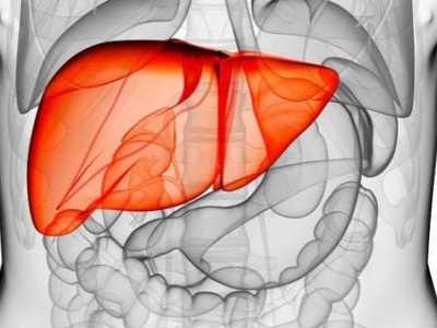 肝肾功能检查的项目及其意义 剧烈运动对胆红素的影响