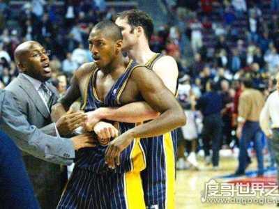 NBA史上最恶劣的斗殴事件 阿泰斯特打架