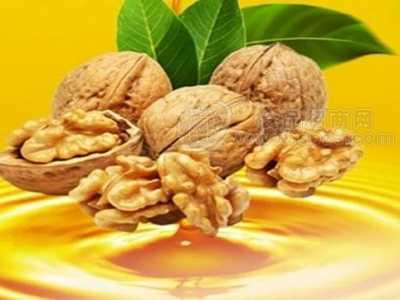 核桃油的功效与作用及食用方法 核桃油的作用