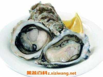生蚝和牡蛎有什幺区别 牡蛎是什幺