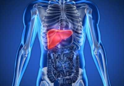 肝不好的人有什幺症状 肝脏不好有什幺症状