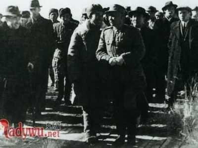 王震将军血洗新疆真相 王震杀新疆人