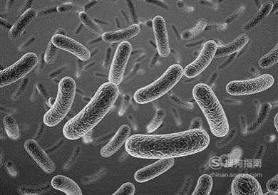 注射肉毒杆菌的 肉毒杆菌的危害