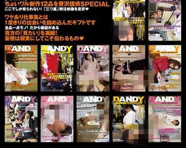 番号 番号dandy-221封面
